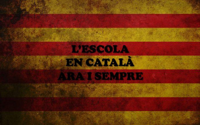 escola_en_catal_02