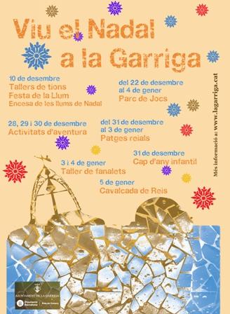 cartell2011cara