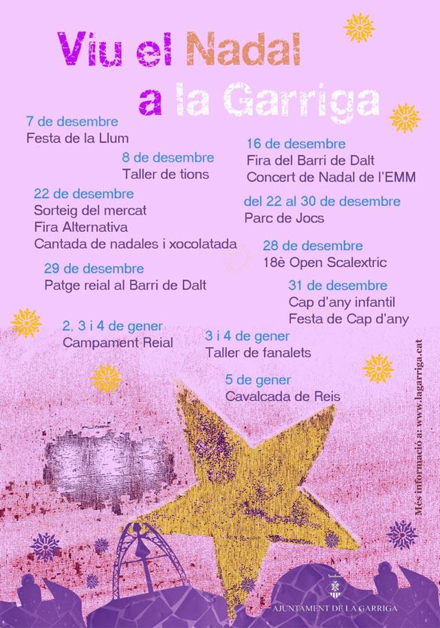 Festa_de_la_Llum_cara