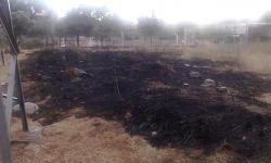 incendi pinetons02