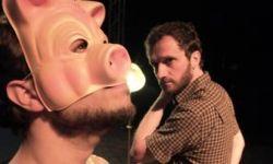 thumb Pell de porc