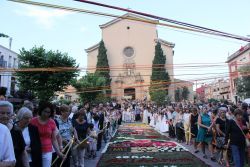Corpus 2015_Berta_Foto