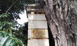 CDR EL_PASSEIG_DEL_PRIMER_DOCTUBRE_03